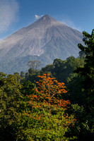 Volcan Fuego Coffee by RudyGiron-11