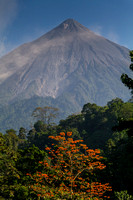 Volcan Fuego Coffee by RudyGiron-13