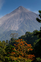 Volcan Fuego Coffee by RudyGiron-14