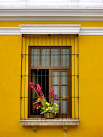 Yellow wall and window